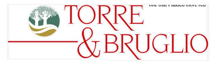 new logo tob